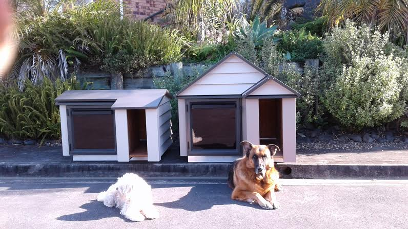 Two of our dogs outside there kennels