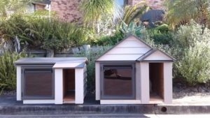 Custom made weatherboard dog kennel
